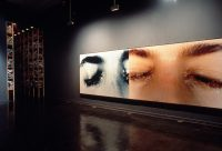 New Museum of Contemporary Art Exhibitions