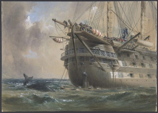 Robert Charles Dudley. H.M.S. Agamemnon Laying the Atlantic Telegraph Cable in 1858: a Whale Crosses the Line. 1865-1866. Image and data provided by the Metropolitan Museum of Art. Public domain.