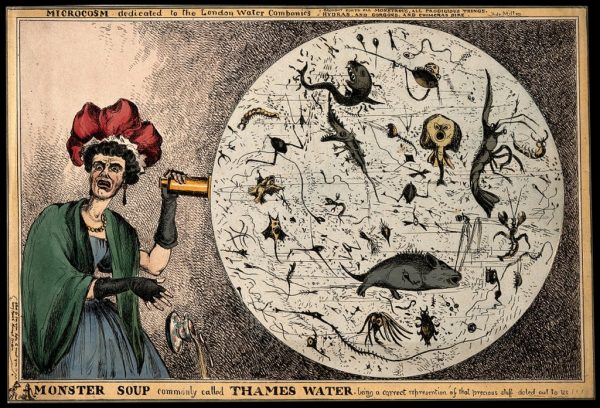 A woman dropping her porcelain tea-cup in horror upon discovering the monstrous contents of a magnified drop of Thames water; revealing the impurity of London drinking water. Colored etching by W. Heath, 1828