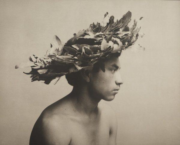 Luis González Palma. El árbol, 1993
